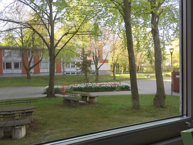 Titta ut genom fönstret Dennis Widmark